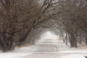 Winter Blizzard Road